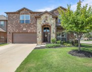 10429 Boxthorn Court, Fort Worth image