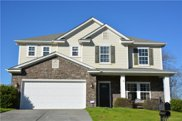 775 Ivy Trail  Way, Fort Mill image