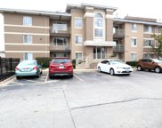 4217 West 76Th Street Unit 204, Chicago image