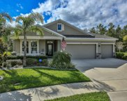 160 River Manor Lane, Ormond Beach image