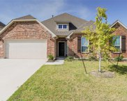 1017 Basket Willow Terrace, Fort Worth image