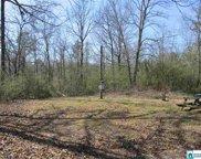 Pitts Dr Unit 2 acres, Anniston image