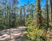 Kijik Trail, Groveland image