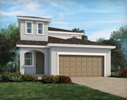 34057 White Fountain Court, Wesley Chapel image