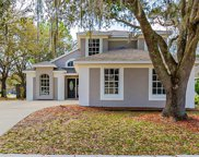 28546 Meadowrush Way, Wesley Chapel image