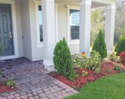2360 Mistral Ct, Kissimmee image