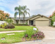 2603 Greatview Place, Valrico image