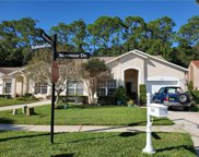 3522 Tealwood Circle, Palm Harbor image