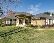 3328 BLACKSTONE CT, Green Cove Springs image