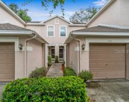 3571 Country Pointe Place, Palm Harbor image