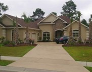 TBD Lot 552 Wood Stork Dr., Conway image