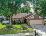 7102 Hollowell Drive, Tampa image