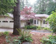 6024 Tiger Tail Dr SW, Olympia image