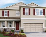 10923 Kidron Valley Lane, Tampa image