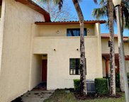 10288 Turkey Lake Road Unit 136, Orlando image