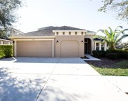15651 Starling Water Drive, Lithia image