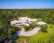 4901 Turnbury Wood Drive, Tampa image