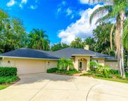 27811 Lake Jem Road, Mount Dora image