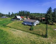 10145 Case Rd SW, Olympia image