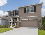 12539 Candleberry Circle, Tampa image