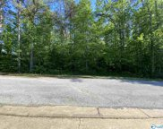 301 Daylily Drive, Hamilton image