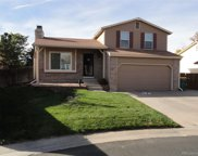 8465 Curlycup Place, Parker image