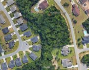 336 Capers Creek Dr., Myrtle Beach image