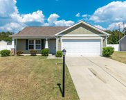 1321 Leatherman Rd., Conway image