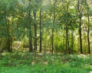 5.01 +/- Acre Tract, Bogard Road, Cosby image