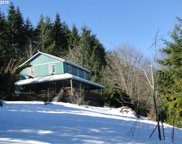 39890 PLACE  RD, Fall Creek image