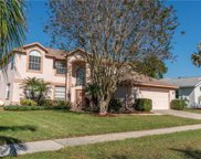 11544 Glenmont Drive, Tampa image