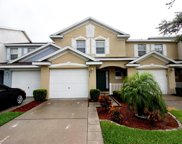 6209 Olivedale Drive, Riverview image