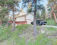 13381 Douglas Ranch Drive, Pine image