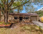 522 Avocado Circle, Brandon image
