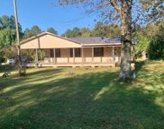 575 Shady Grove Rd, Phil Campbell image