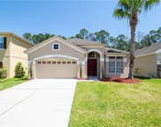 1145 Crane Crest Way Unit 1B, Orlando image