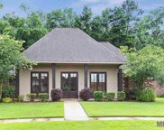 13340 Williamsburg Dr, Walker image