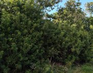 113 NE Lima Court, Port Saint Lucie image