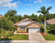 5404 Hammock View Lane, Apollo Beach image