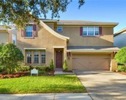 11513 Meridian Point Drive, Tampa image