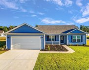 1317 Red Head Ct., Conway image