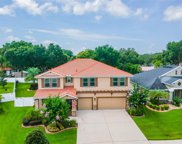 215 Parsons Wood Drive, Seffner image