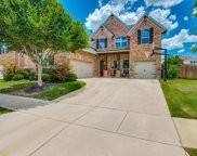 14247 Carly Lane, Frisco image