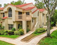 331 Los Prados Drive Unit 331, Safety Harbor image