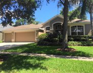 3111 Red Lion Drive, Valrico image