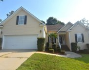 305 Tanners Mill Court, Chapin image