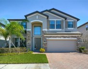 10762 Pleasant Knoll Drive, Tampa image