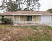 8506 Spring Hill Drive, Spring Hill image