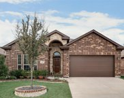 2408 Canyon Wren Lane, Fort Worth image