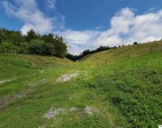 Lot 1 Maples Branch Road, Sevierville image